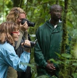 Rwanda gorilla watching tour